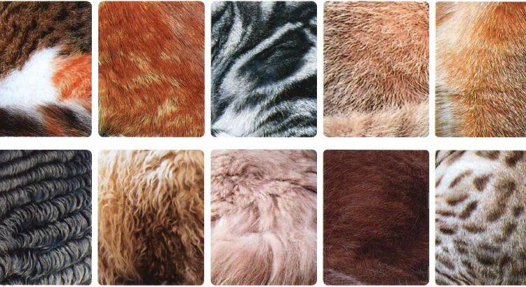 Экстравагантные шубы с животным принтом