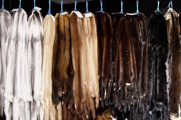 Как отличить натуральный мех от искусственного?