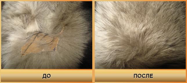 Особенности и нюансы реставрации шуб